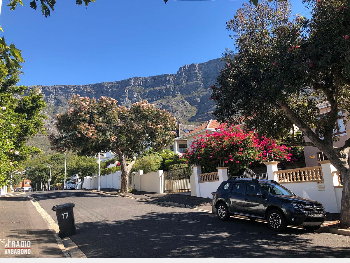 Jeg fandt Sugar i et smukt kvarter i Cape Town
