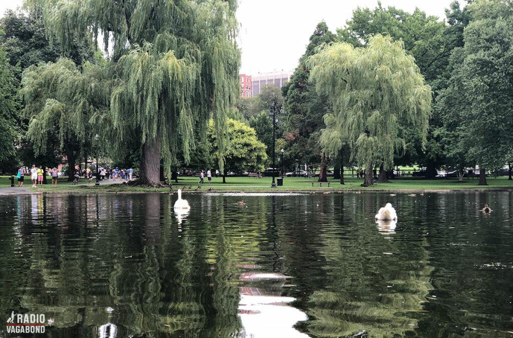 Boston har den ældste offentlige park i USA. Boston Common blev indviet i 1634.